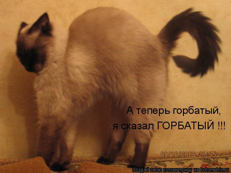 http://kotomatrix.ru/images/lolz/2009/10/16/378594.jpg