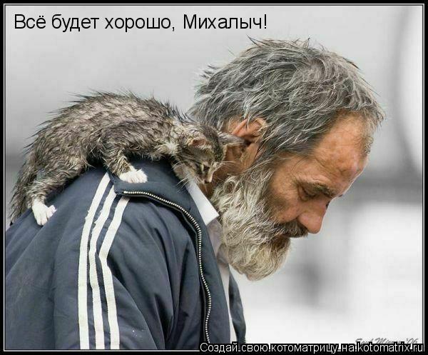 Котоматрица: Всё будет хорошо, Михалыч!
