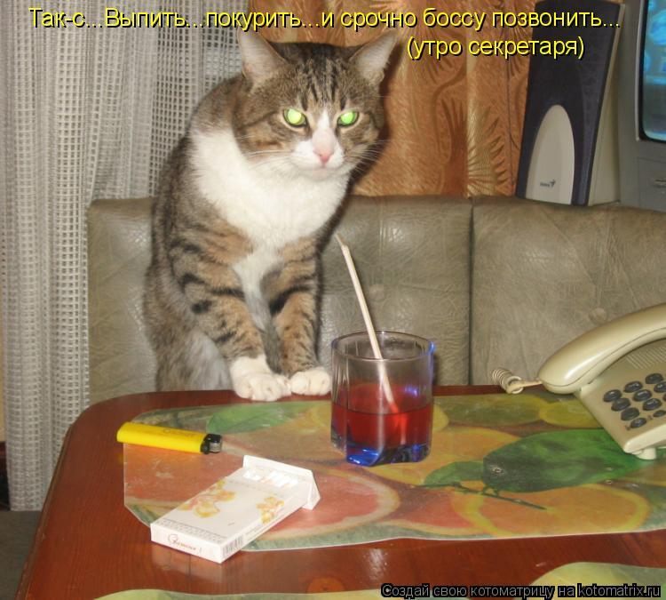 Котоматрица: Так-с...Выпить...покурить...и срочно боссу позвонить... (утро секретаря)