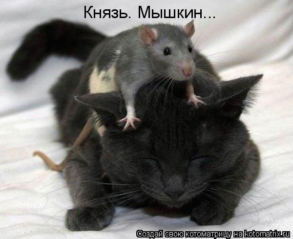 Котоматрица: Князь. Мышкин...