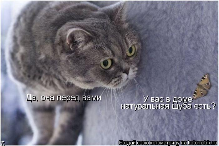 Котоматрица: Да, она перед вами У вас в доме  натуральная шуба есть?
