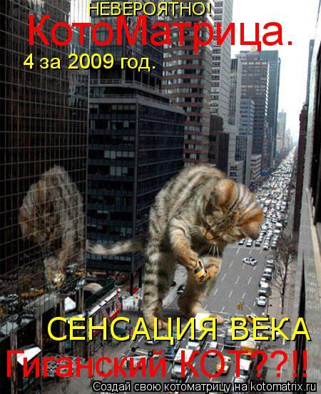 Котоматрица: КотоМатрица. №4 за 2009 год. Гиганский КОТ??!! СЕНСАЦИЯ ВЕКА НЕВЕРОЯТНО!