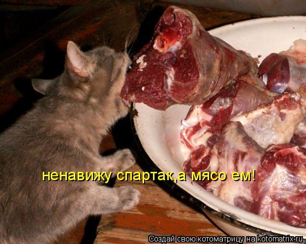 Котоматрица: ненавижу спартак,а мясо ем!