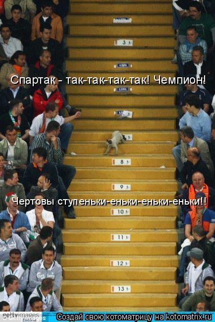 Котоматрица: Спартак - так-так-так-так! Чемпион! Чертовы ступеньки-еньки-еньки-еньки!!