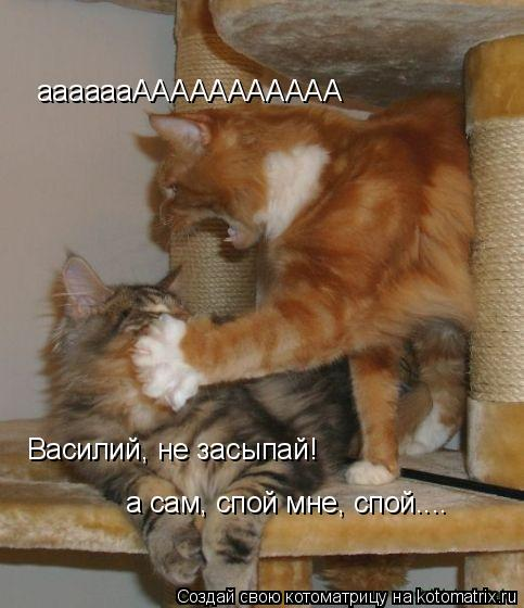 Котоматрица: ааааааААААААААААА Василий, не засыпай!  а сам, спой мне, спой....