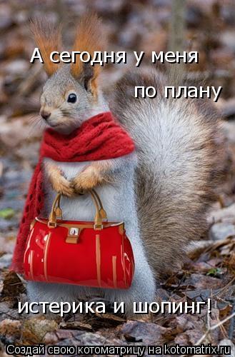 Котоматрица: А сегодня у меня  по плану  истерика и шопинг!