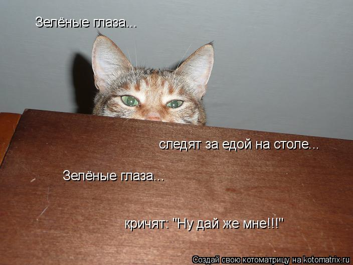 "Котоматрица: Зелёные глаза... следят за едой на столе... Зелёные глаза... кричят: ""Ну дай же мне!!!"""