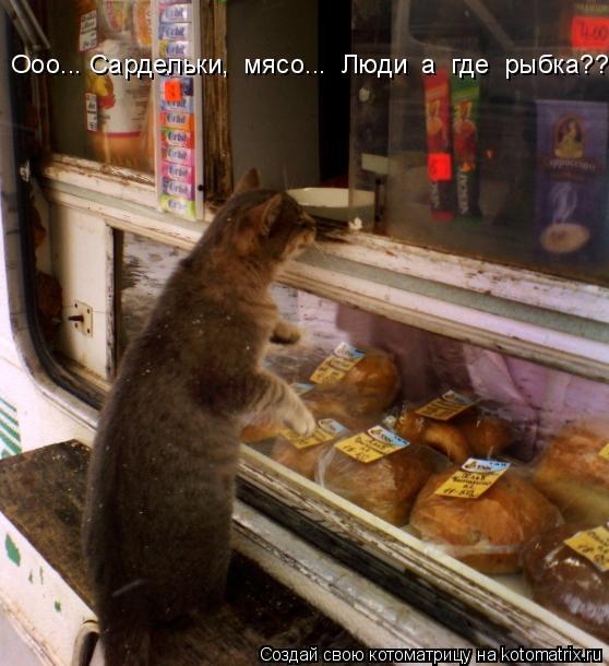 Котоматрица: Ооо... Сардельки,  мясо...  Люди  а  где  рыбка???