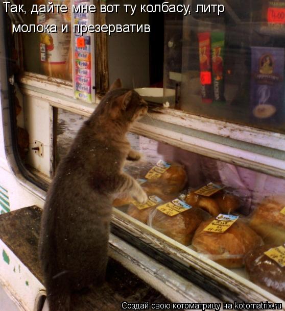 Котоматрица: Так, дайте мне вот ту колбасу, литр молока и презерватив