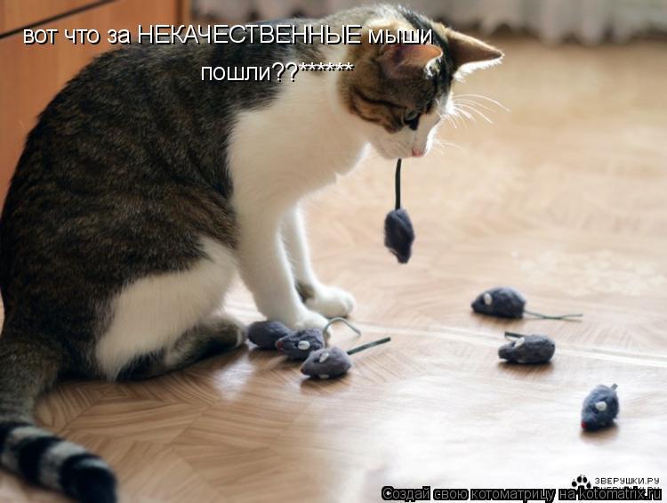 Котоматрица: вот что за НЕКАЧЕСТВЕННЫЕ мыши пошли??******