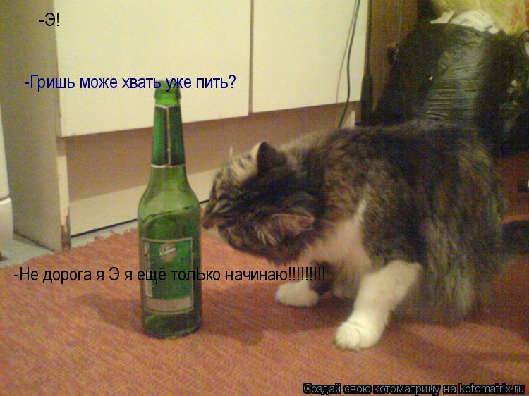 Котоматрица: -Э! -Гришь може хвать уже пить? -Не дорога я Э я ещё толЬко начинаю!!!!!!!!!
