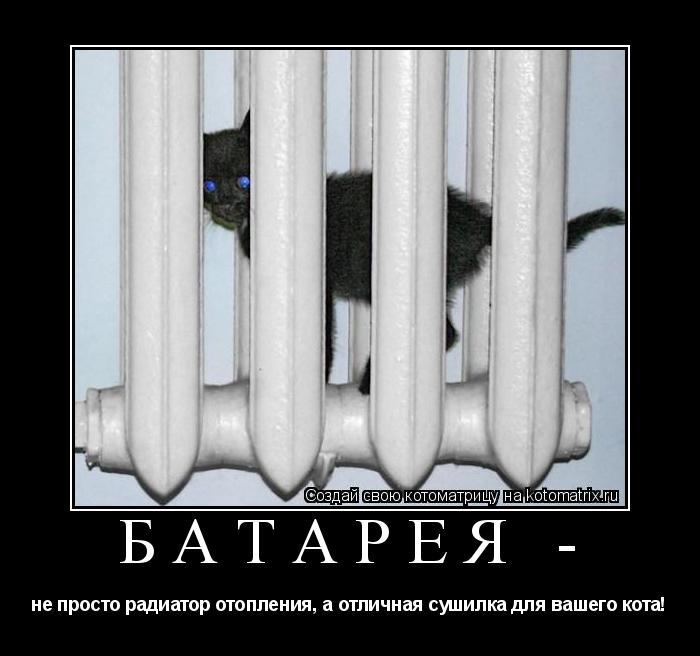 Котоматрица: батарея -  не просто радиатор отопления, а отличная сушилка для вашего кота!