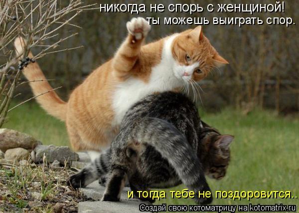 Котоматрица: никогда не спорь с женщиной! ты можешь выиграть спор. и тогда тебе не поздоровится...