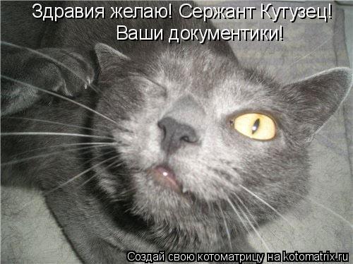 Котоматрица: Здравия желаю! Сержант Кутузец! Ваши документики!