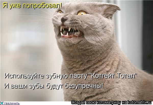 """Котоматрица: Используйте зубную пасту """"Котгейт Тотал"""" И ваши зубы будут безупречны! Я уже попробовал!"""