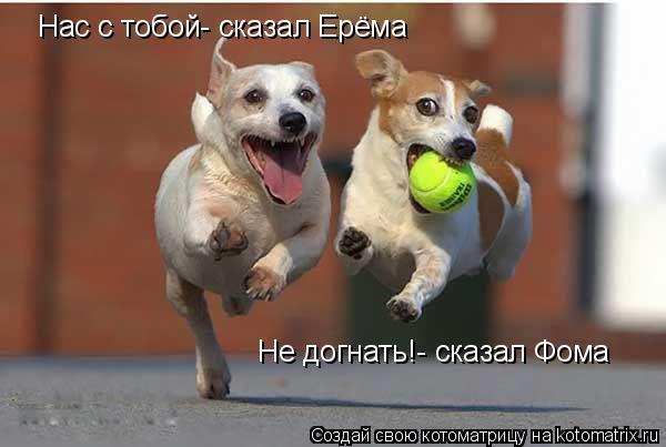 Котоматрица: Нас с тобой- сказал Ерёма Не догнать!- сказал Фома