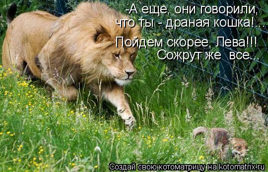 Котоматрица: -А еще, они говорили, Пойдем скорее, Лева!!! что ты - драная кошка!... Сожрут же  все...