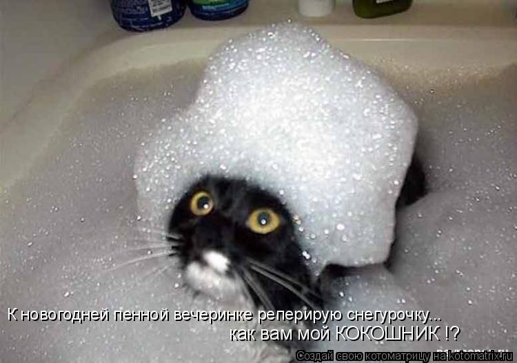 Котоматрица: К новогодней пенной вечеринке реперирую снегурочку... как вам мой КОКОШНИК !?