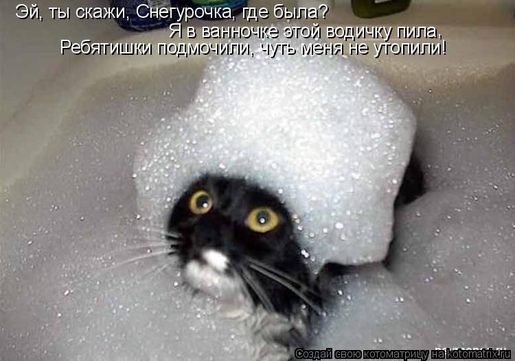 Котоматрица: Эй, ты скажи, Снегурочка, где была? Я в ванночке этой водичку пила Ребятишки подмочили, чуть меня не утопили! ,