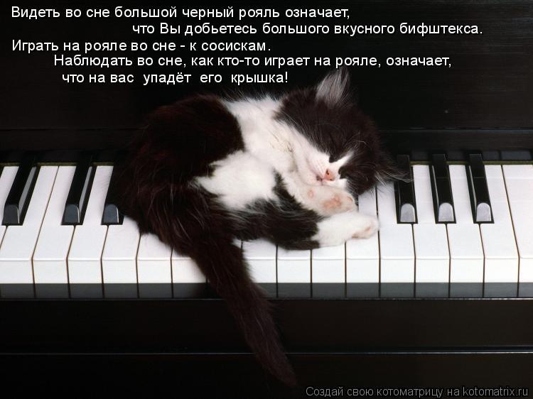 Котоматрица: Видеть во сне большой черный рояль означает,   что Вы добьетесь большого вкусного бифштекса. Играть на рояле во сне - к сосискам. Наблюдать в