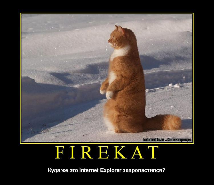 Котоматрица: Firekat Куда же это Internet Explorer запропастился?