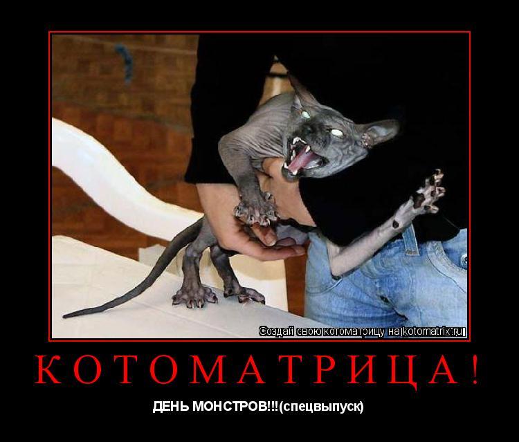Котоматрица: КОТОМАТРИЦА! ДЕНЬ МОНСТРОВ!!!(спецвыпуск)