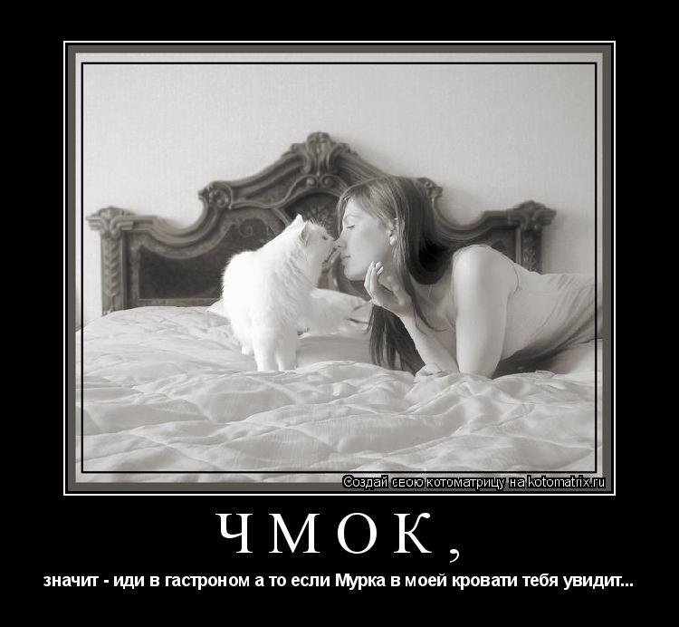 Котоматрица: чмок, значит - иди в гастроном а то если Мурка в моей кровати тебя увидит...