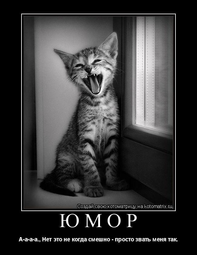 Котоматрица: юмор А-а-а-а., Нет это не когда смешно - просто звать меня так.