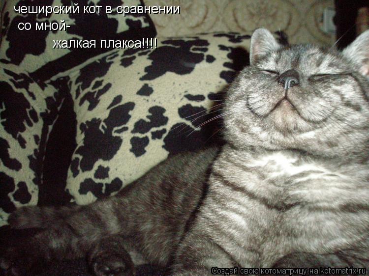 Котоматрица: че чеширский кот в сравнении со мной- жалкая плакса!!!!