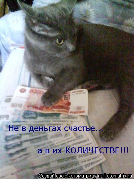 Котоматрица: Не в деньгах счастье... а в их КОЛИЧЕСТВЕ!!!