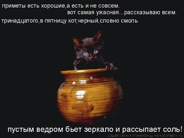 Котоматрица: приметы есть хорошие,а есть и не совсем. вот самая ужасная...рассказываю всем. тринадцатого,в пятницу кот,черный,словно смоль пустым ведром