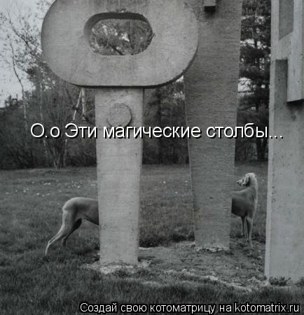 Котоматрица: О.о Эти магические столбы...
