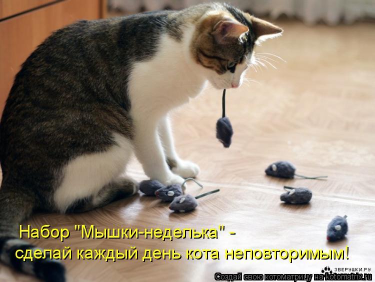 """Котоматрица: Набор """"Мышки-неделька"""" - сделай каждый день кота неповторимым!"""