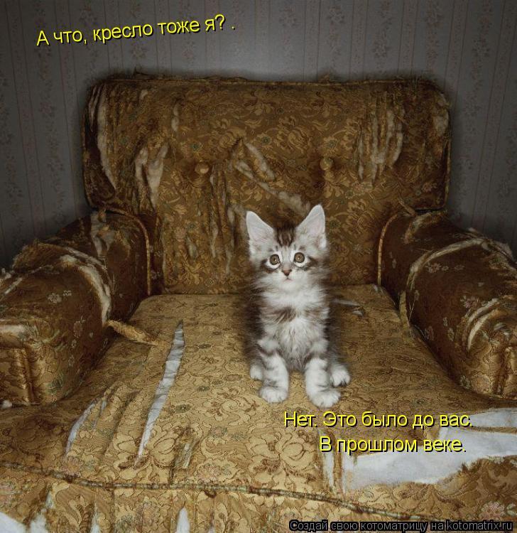 Котоматрица: А что, кресло тоже я? . Нет. Это было до вас. В прошлом веке.