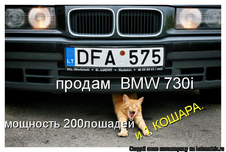 Котоматрица: продам  BMW 730i мощность 200лошадей и 1 КОШАРА. и 1 КОШАРА.