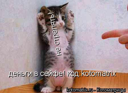 Котоматрица: не стрелять! деньги в сейфе! код:kotomatrix