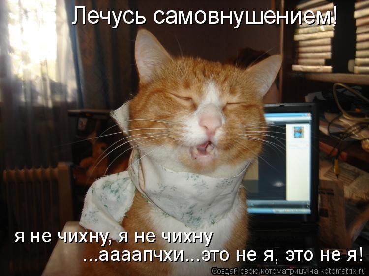 Котоматрица: ...аааапчхи...это не я, это не я! я не чихну, я не чихну Лечусь самовнушением!