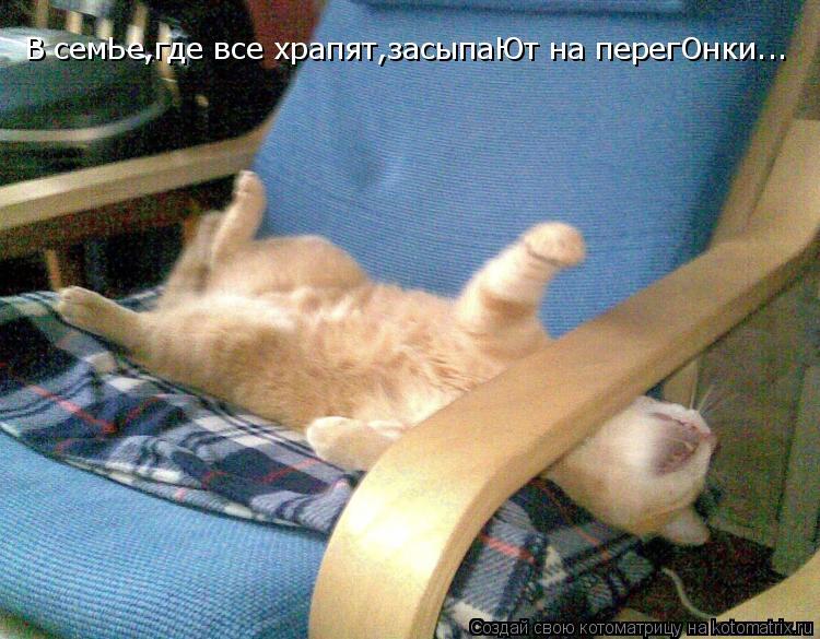 Котоматрица: В семЬе,где все храпят,засыпаЮт на перегОнки...