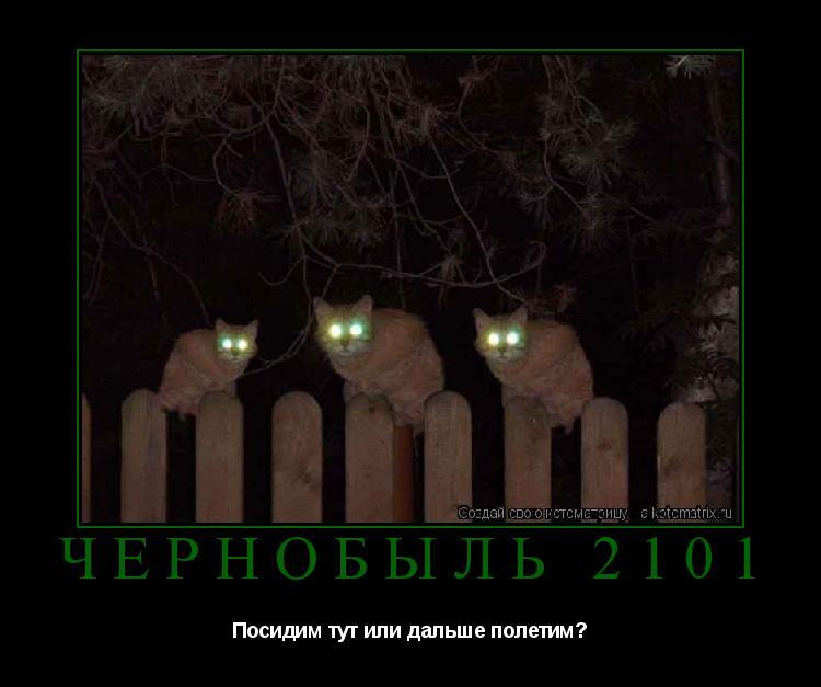 Котоматрица: чернобыль 2101 Посидим тут или дальше полетим?