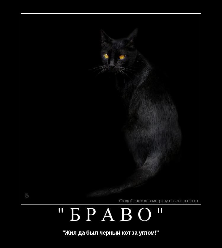"Котоматрица: ""Браво"" ""Жил да был черный кот за углом!"""