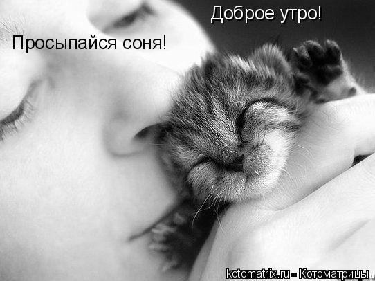 доброе утро соня картинки