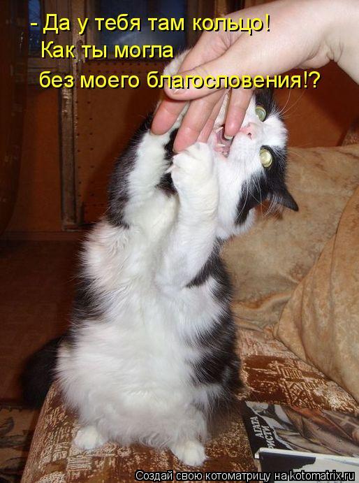 Котоматрица: - Да у тебя там кольцо! Как ты могла  без моего благословения!?