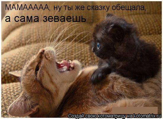 Котоматрица: МАМААААА, ну ты же сказку обещала, а сама зеваешь