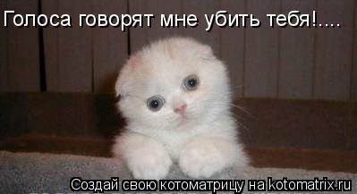 Котоматрица: Голоса говорят мне убить тебя!....