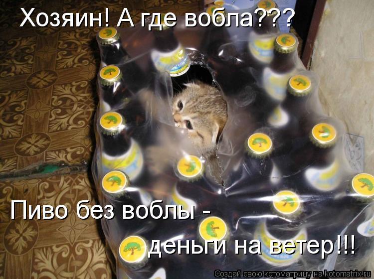 Котоматрица: Хозяин! А где вобла??? Пиво без воблы - деньги на ветер!!!