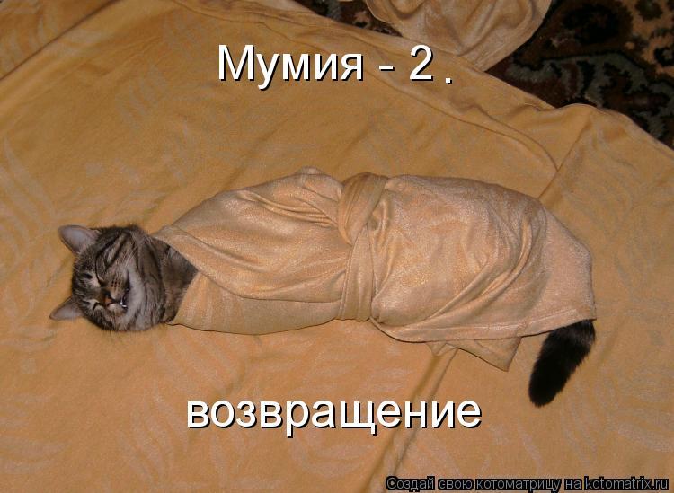 Котоматрица: Мумия - 2 возвращение .