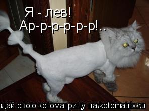 Котоматрица: Я - лев! Ар-р-р-р-р-р!..