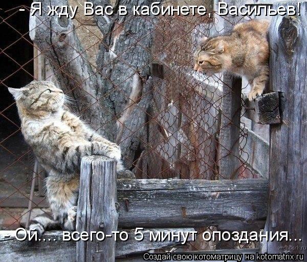 Котоматрица: - Я жду Вас в кабинете, Васильев! - Ой.... всего-то 5 минут опоздания...
