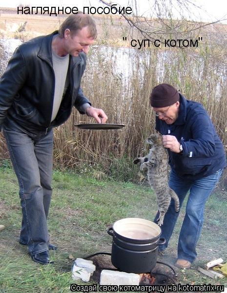 """Котоматрица: наглядное пособие """" суп с котом"""""""