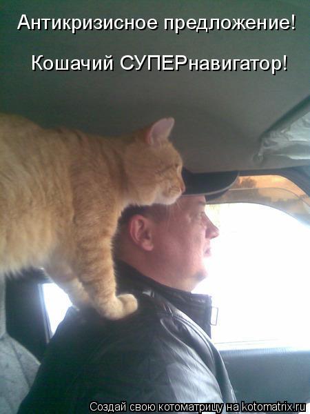 Котоматрица: Антикризисное предложение! Кошачий СУПЕРнавигатор!